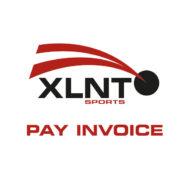 payinvoice