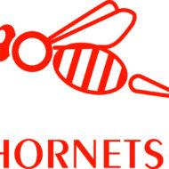 12201 - Hornets - brand logo